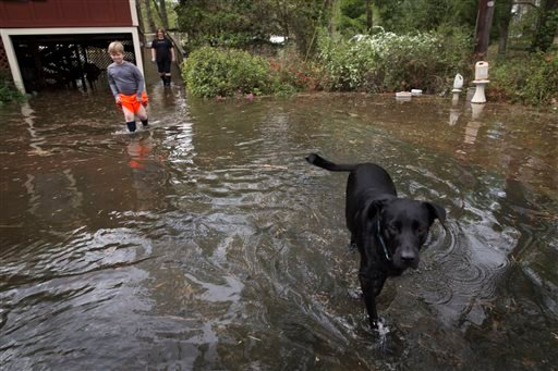 (Lee Celano/The Shreveport Times via AP). Melissa Anderson, center, and her son Hadley walk through flood waters from Caddo Lake with their dog Henry in Mooringsport, La., Sunday, March 13, 2016.