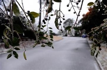 (AP Photo/David Tulis). Ice hangs from foliage on a residential street on Wednesday, Feb. 12, 2014, in Atlanta.