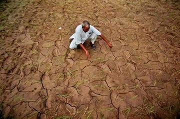 © (AP Photo/Channi Anand, File). FILE - In this Aug. 3, 2012 file photo, an Indian farmer shows a dry, cracked paddy field in Ranbir Singh Pura 34 kilometers (21 miles) from Jammu, India.