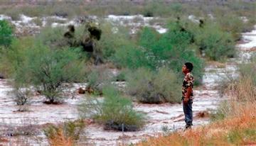 (AP Photo/Matt York). Ramiro Pantaleon watches flash flood waters overrun Skunk Creek through the Sonoran Desert, Tuesday, Aug. 19, 2014, in northwestern Phoenix.
