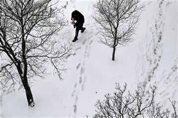 (AP Photo/Patrick Semansky). A man walks on a snow-covered sidewalk, Tuesday, Jan. 6, 2015, in Baltimore. The National Weather Service says snowfall totals could reach 4 to 6 inches in the Washington suburbs and 3 to 5 in the Maryland mountains.
