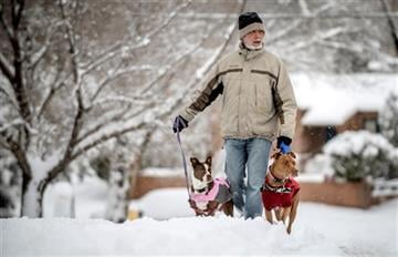 (AP Photo/The Albuquerque Journal, Roberto E. Rosales). Richard Adams, of Albuquerque, walks with his two dogs Bulka and Rizhik Saturday morning, Feb. 28, 2015, in the Nob Hill neighborhood of Albuquerque, N.M.