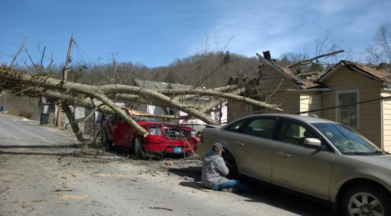 A man escapes a tree fall with minor injuries outside his home in Bramwell on Monday.