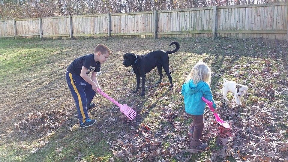 Max playing with Curry's kids and their other dog, Tyson, when he was a puppy