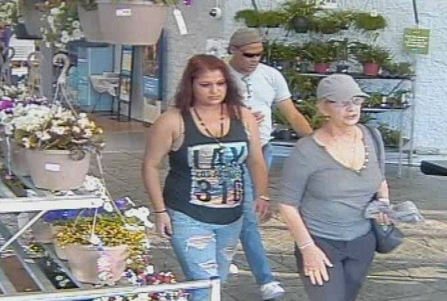 Suspects are accused of stealing $1800 from Walmart stores in Pounding Mill and Lebanon.