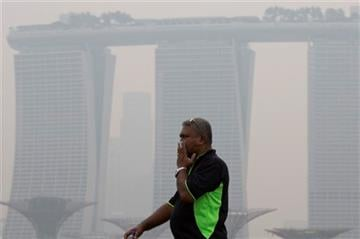 (AP Photo/Ng Han Guan, File). FILE - In this Sept. 10, 2015 file photo, a man covers his nose during a hazy day in Singapore.