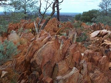 PNAS) via AP). This photo provided by the Proceedings of the National Academy of Sciences (PNAS), taken in 2005, shows fossil-like rock found in Australia containing hints of life from 4.1 billion years ago.