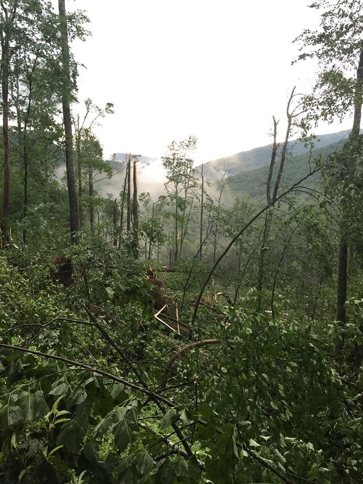 Pic:National Forest Service, N. Greenbrier county storm damage