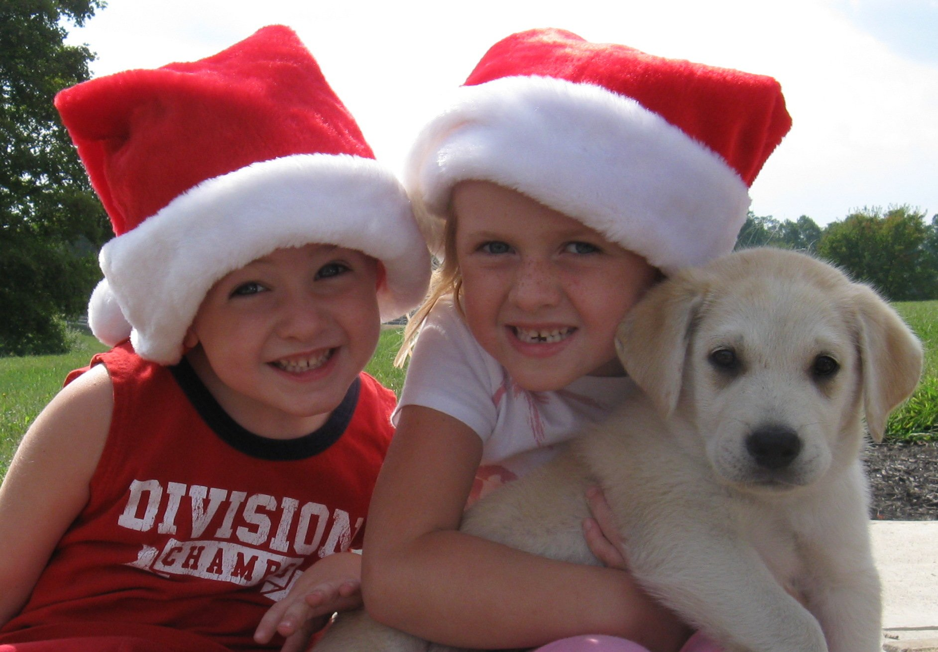 """Best Christmas Card Photo"" Dolly Maddy!"